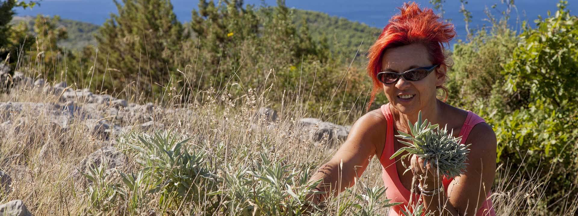 Mljet Hiking Daily TM Adventure Slide 6